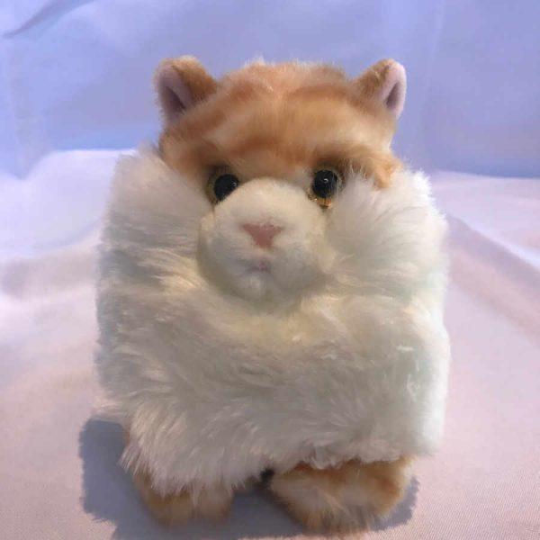 Cheltenham Cat Rescue, Fluff Ball Ginger
