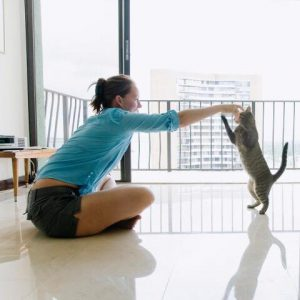Give Your Rescue Cat the Best Start in Their New Home