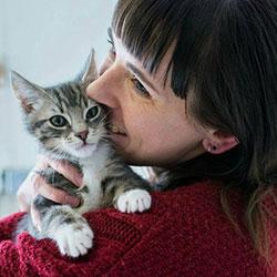 Adopt a CCR cat